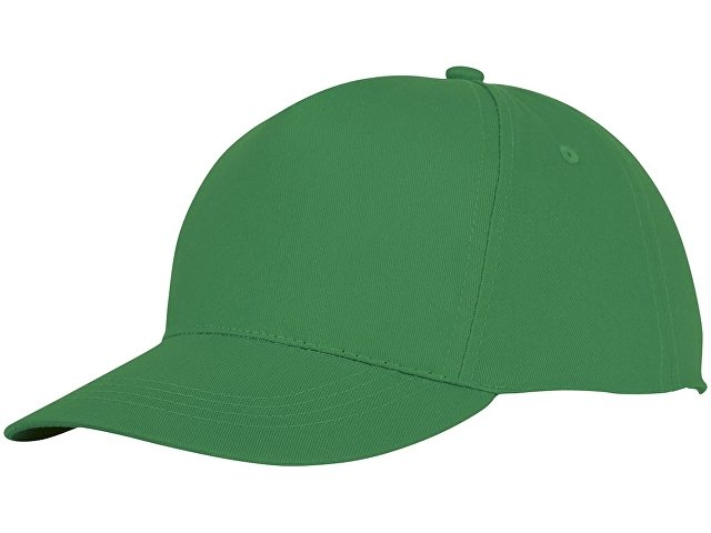 Пятипанельная кепка Hades, зеленый папоротник