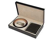 Подарочный набор: ремень, портмоне (арт. 56502)