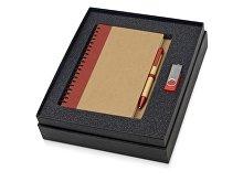 Подарочный набор Essentials с флешкой и блокнотом А5 с ручкой (арт. 700321.01)