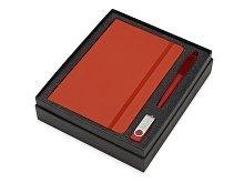 Подарочный набор Vision Pro Plus soft-touch с флешкой, ручкой и блокнотом А5 (арт. 700342.01)