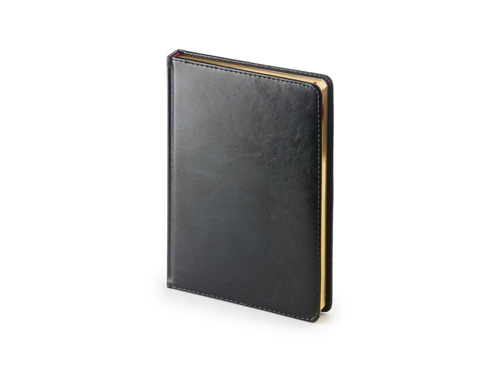 Ежедневник недатированный А5 «Sidney Nebraska», черный
