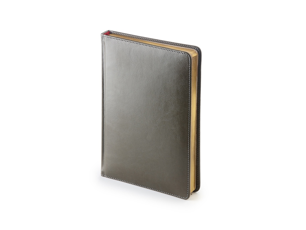 Ежедневник недатированный А5+ «Sidney Nebraska», серый