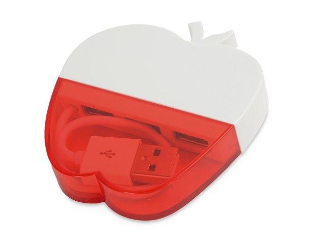 USB Hub «Красное яблоко»