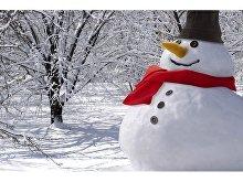 Набор аксессуаров для снеговика(арт. 11249700), фото 3