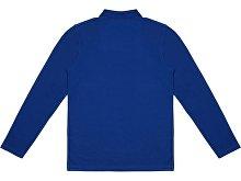Рубашка поло «Seattle» мужская с длинным рукавом(арт. 3110447S), фото 3