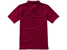 Рубашка поло «Calgary» мужская(арт. 3808024XS), фото 8