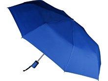 Зонт складной «Сторм-Лейк»(арт. 907512), фото 2