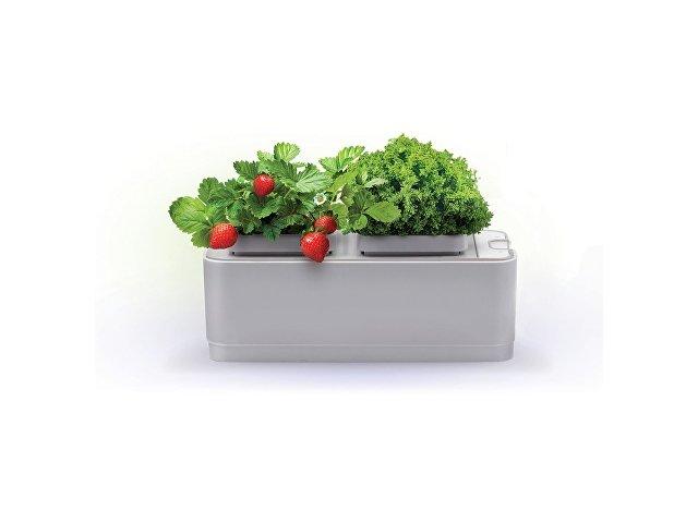 Компактный смарт-сад «iGarden»