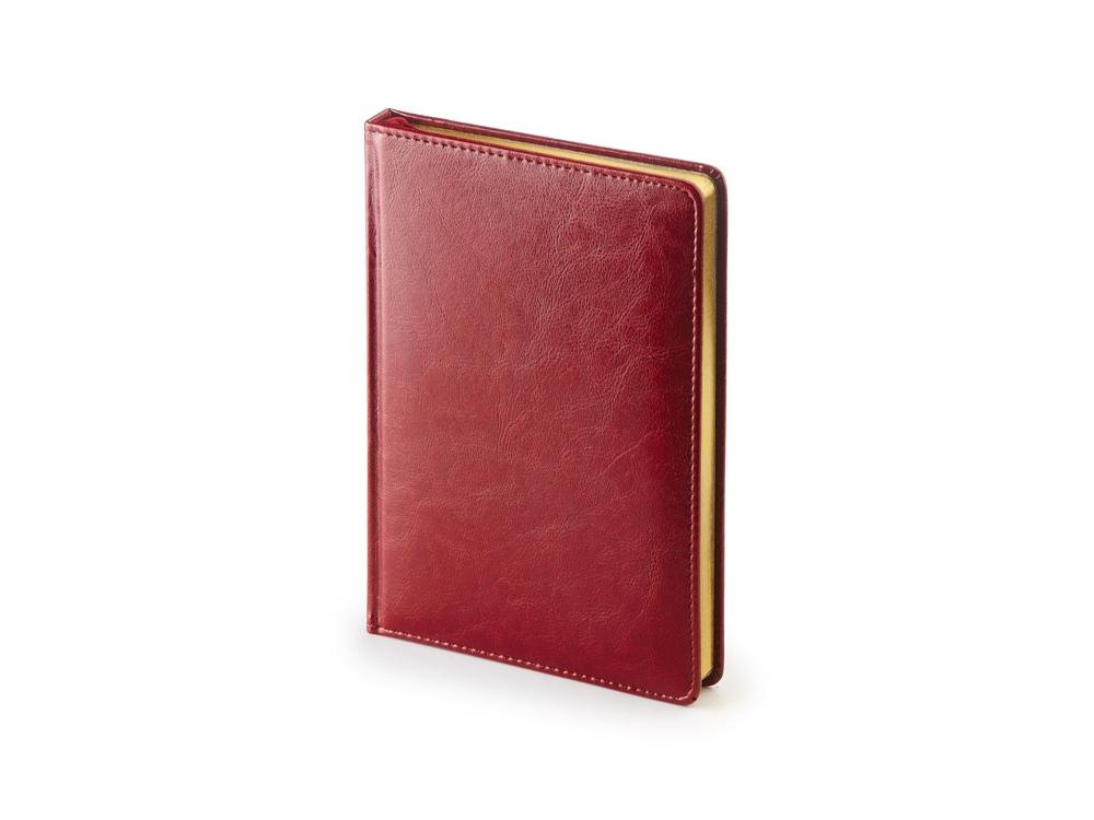 Ежедневник А5 датированный Sidney Nebraska 2020, бордовый