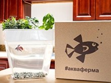 Набор для выращивания растений и ухода за рыбкой «Акваферма» (арт. 607701), фото 8