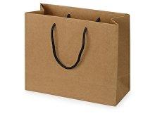 Пакет подарочный Kraft M (арт. 9911329)