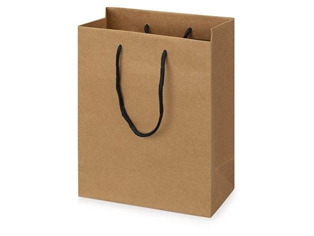 Пакет подарочный Kraft S
