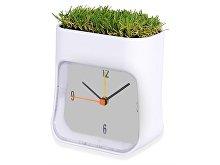 Часы настольные «Grass» (арт. 105422)