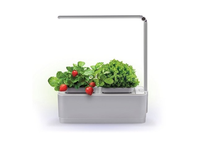 Компактный смарт-сад «iGarden LED» с подсветкой