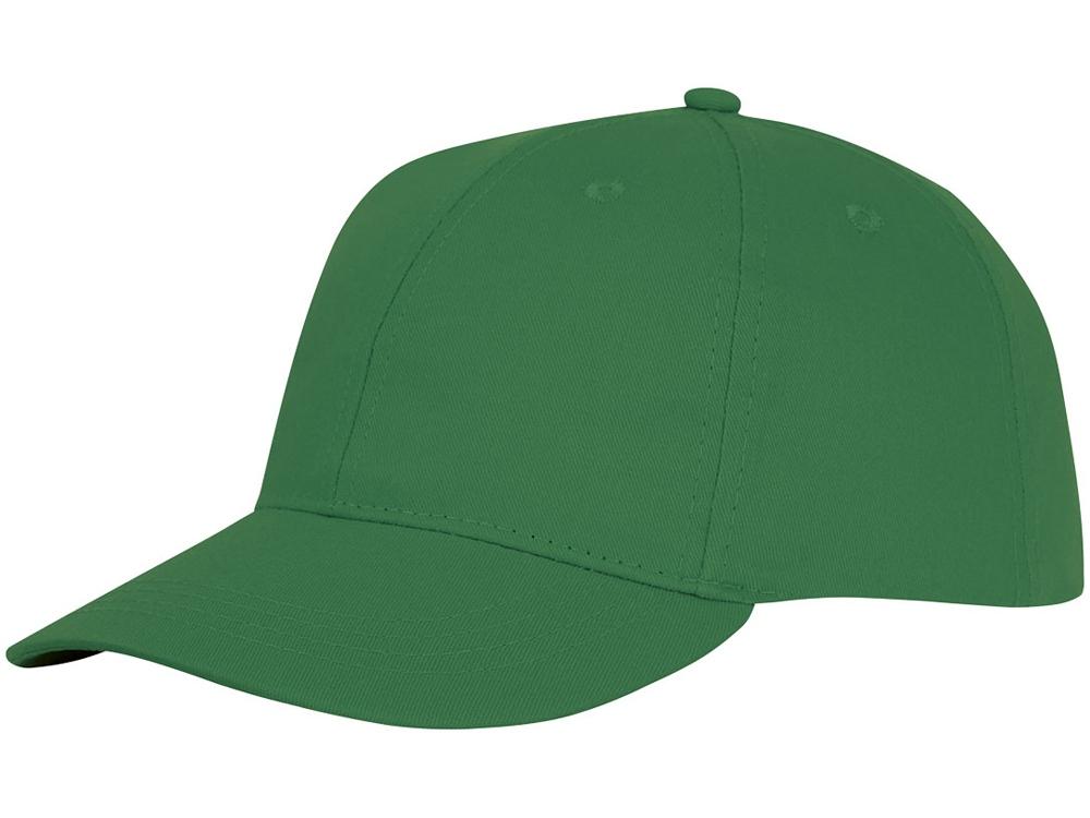 Шестипанельная кепка Ares, зеленый папоротник