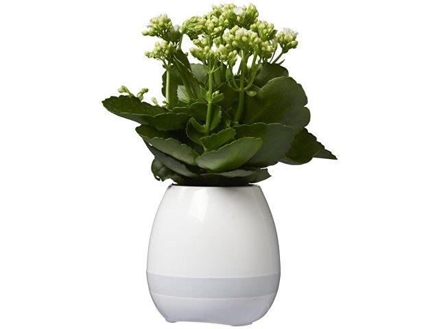 Динамик Green Thumb Flower Pot с Bluetooth®