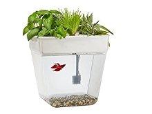 Набор для выращивания растений и ухода за рыбкой «Акваферма» (арт. 607701), фото 3