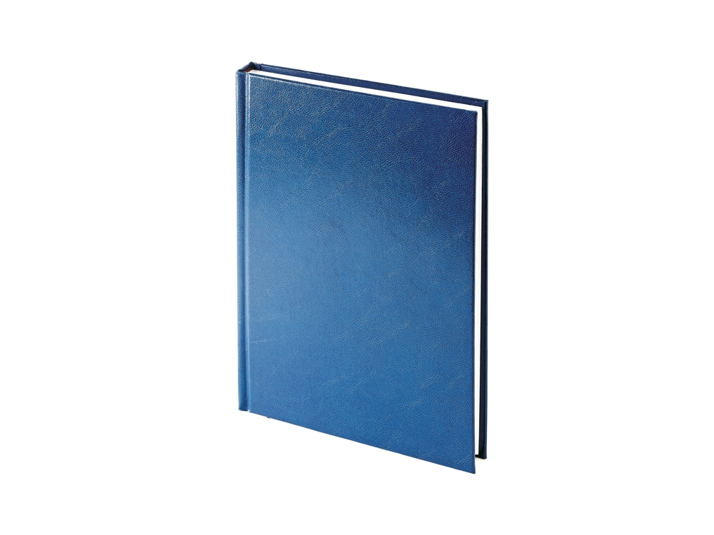 Ежедневник недатированный А5 Ideal New, синий