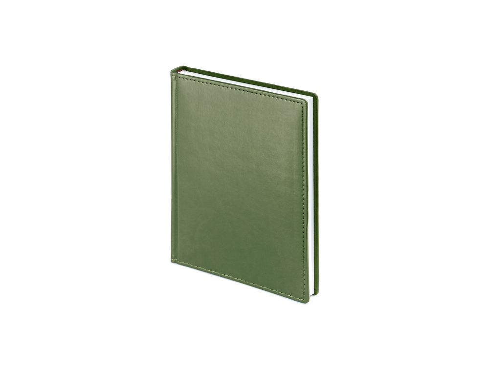 Ежедневник недатированный А6+ Velvet, оливковый