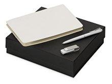 Подарочный набор «Notepeno» с блокнотом А5, флешкой и ручкой (арт. 700415.06)