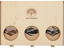 Подарочный набор «Camellia» с ассорти чая (арт. 700098), фото 9