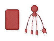 Портативное зарядное устройство «BioPack» c кабелем «Mr. Bio», 5000 mAh (арт. 965113)