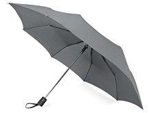 Зонт складной «Irvine» (арт. 979091)